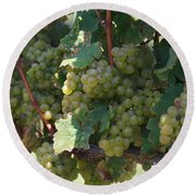 Green Grapes On The Vine 18 Round Beach Towel