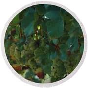Green Grapes On The Vine 4 Round Beach Towel
