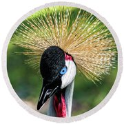 Grey Crowned Crane Gulf Shores Al Collage 2 Triptych Round Beach Towel