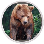 Grin And Bear It Round Beach Towel