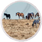 Hanging With Family And Friends - South Steens Wild Horses Round Beach Towel by Belinda Greb