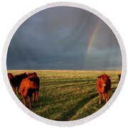 Heifers And Rainbow Round Beach Towel by Rob Graham