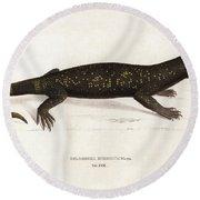 Heloderma Horridum, Beaded Lizard Round Beach Towel by Unknown