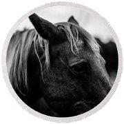Horse Up-close Round Beach Towel