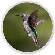 Hovering Hummer Round Beach Towel
