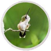 Hummingbird Flexibility Round Beach Towel
