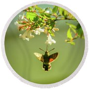 Hummingbird Hawk-moth Round Beach Towel