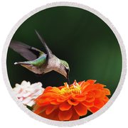 Hummingbird In Flight With Orange Zinnia Flower Round Beach Towel