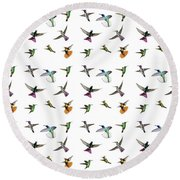 Hummingbirds Of Trinidad And Tobago On White Round Beach Towel