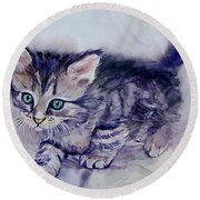 Hunting For A Mouse Round Beach Towel