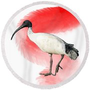 I Is For Ibis Round Beach Towel