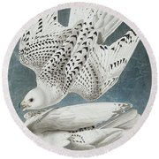 Iceland Falcon Or Jer Falcon By Audubon Round Beach Towel