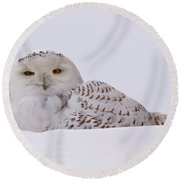 It's All In The Eyes Round Beach Towel