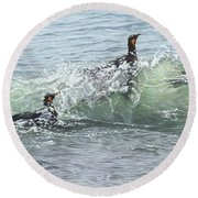 King Penguins Swimming In The Waves Round Beach Towel by Alan M Hunt