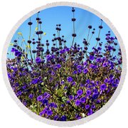 Lavender Blooms  Round Beach Towel