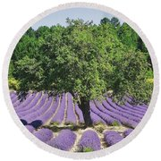 Lavender Field And Tree Round Beach Towel