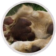 Lion's Feet Round Beach Towel
