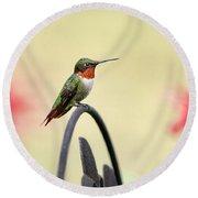 Little Hummingbird Round Beach Towel