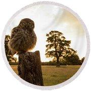 Little Owl Sunset Round Beach Towel