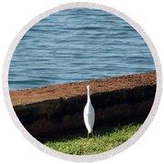 Little White Egret Egretta Garzetta Round Beach Towel