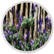 Love Of Lavender Round Beach Towel