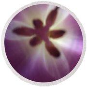 Macro Purple Tulip Round Beach Towel by Marian Palucci-Lonzetta