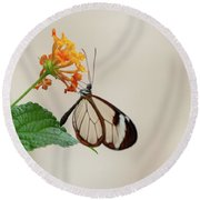 Made Of Glass Round Beach Towel by Anjo Ten Kate