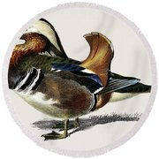 Mandarin Duck  Aix Galericulata Illustrated By Charles Dessalines D' Orbigny  1806-1876 1 Round Beach Towel