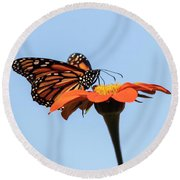 Monarch 2018-27 Round Beach Towel