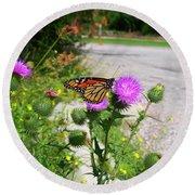 Monarch Butterfly Danaus Plexippus On A Thistle Round Beach Towel