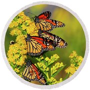 Monarch Gathering 2 Round Beach Towel
