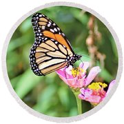 Monarch's Stance... Round Beach Towel
