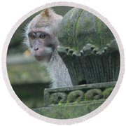 Monkey Forest Round Beach Towel