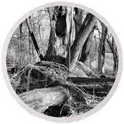 Monochrome Woods 2 Round Beach Towel