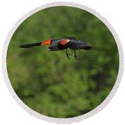 Mr. Red-winged Blackbird In-flight Round Beach Towel