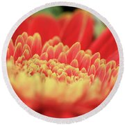 Mum Flower Round Beach Towel