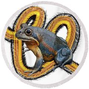 N Is For Northern Banjo Frog Round Beach Towel