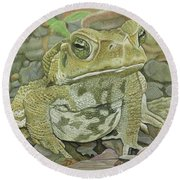 Noble Toad Round Beach Towel