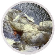 Not Your Average Swimming Hole 3  Round Beach Towel