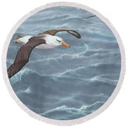 Ocean Flight Seabirds By Alan M Hunt Round Beach Towel