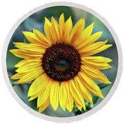 One Bright Sunflower Round Beach Towel