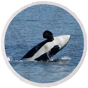 One Orca Leaping Round Beach Towel