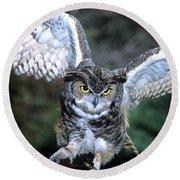 Owls Mascot 2 Round Beach Towel