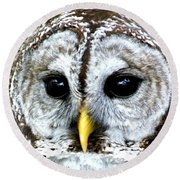 Owls Mascot Round Beach Towel