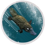 P Is For Platypus Round Beach Towel