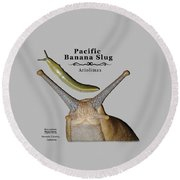 Pacific Banana Slug Round Beach Towel