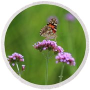 Painted Lady Butterfly Beauty Round Beach Towel
