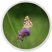 Painted Lady Butterfly In Shadows Round Beach Towel