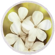 Pale Wildflowers Round Beach Towel