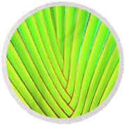 Palms And Fronds - Hawaii Round Beach Towel